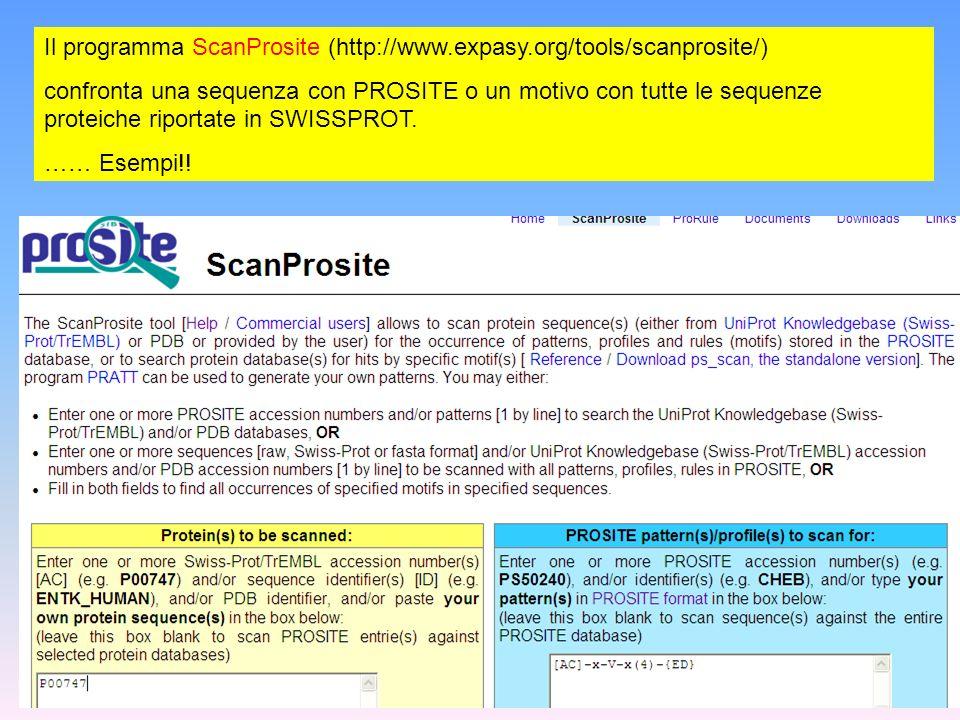 Il programma ScanProsite (http://www.expasy.org/tools/scanprosite/) confronta una sequenza con PROSITE o un motivo con tutte le sequenze proteiche rip