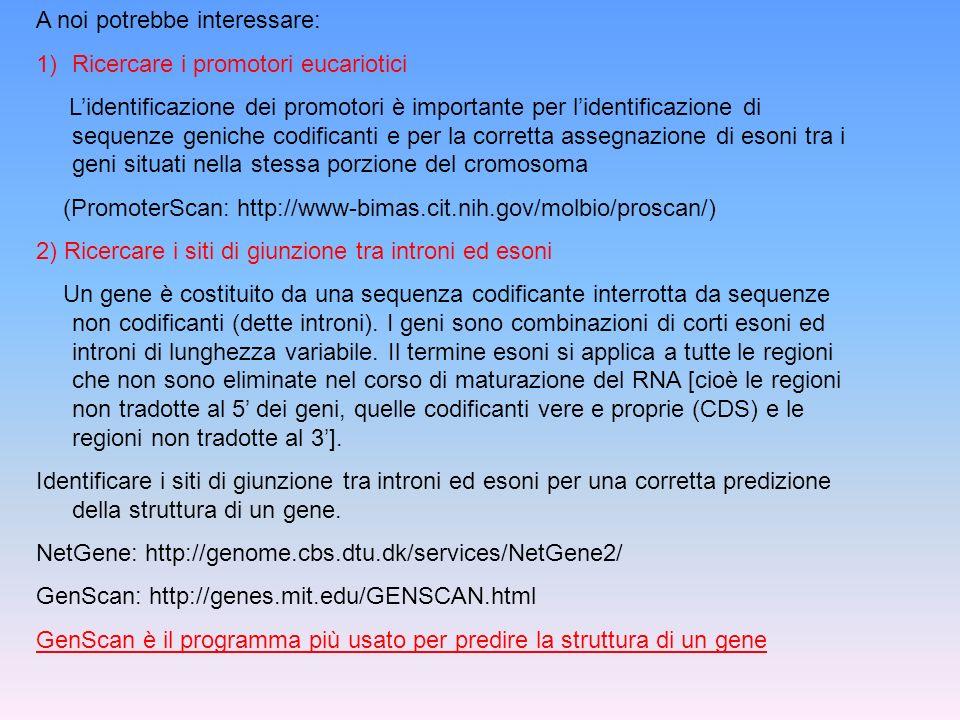 3) Siti di inizio della traduzione Il codone di inizio è in generale (anche se non sempre) il codone AUG che codifica per la Metionina (GeneMark: http://exon.gatech.edu/GeneMark/genemark_prok_gms_plus.cgi/) 4) Identificazione dei segnali di poliadenilazione e di terminazione della traduzione La più nota sequenza segnale coinvolta nella poliadenilazione è AATAAA (GRAIL: http://compbio.ornl.gov/Grail-1.3/