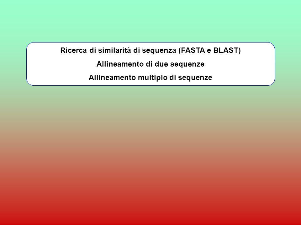 RICERCA DI SIMILARITA E ALLINEAMENTO DI SEQUENZE BLAST e PSI-BLAST http://www.ncbi.nlm.nih.gov/blast/ FASTA http://fasta.bioch.virginia.edu/http://fasta.bioch.virginia.edu/ oppure http://www.ebi.ac.uk/fasta33/