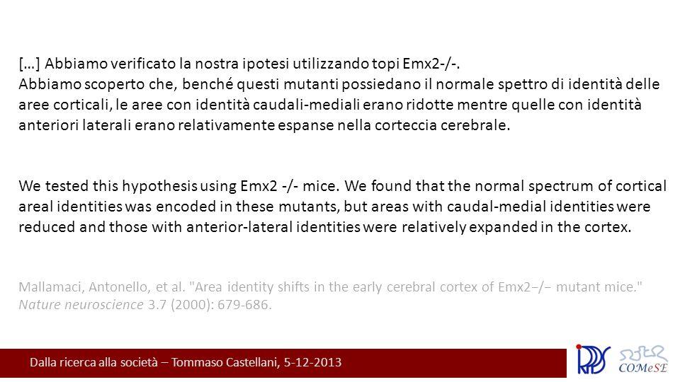 Dalla ricerca alla società – Tommaso Castellani, 5-12-2013 […] Abbiamo verificato la nostra ipotesi utilizzando topi Emx2-/-.