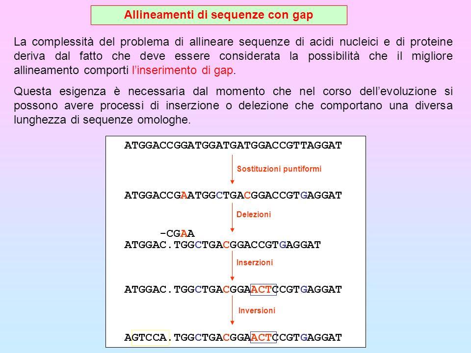 Allineamenti di sequenze con gap La complessità del problema di allineare sequenze di acidi nucleici e di proteine deriva dal fatto che deve essere co