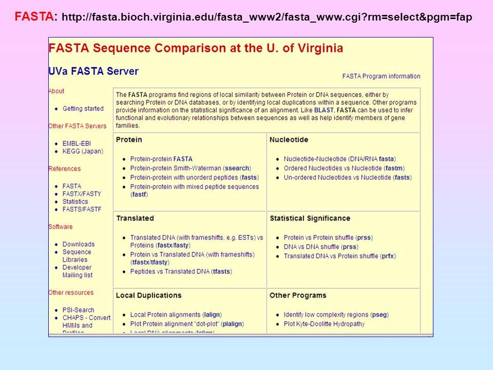 FASTA: http://fasta.bioch.virginia.edu/fasta_www2/fasta_www.cgi?rm=select&pgm=fap
