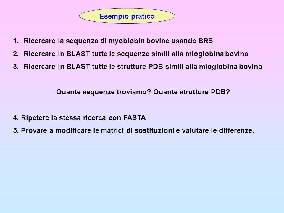Esempio pratico 1.Ricercare la sequenza di myoblobin bovine usando SRS 2.Ricercare in BLAST tutte le sequenze simili alla mioglobina bovina 3.Ricercar