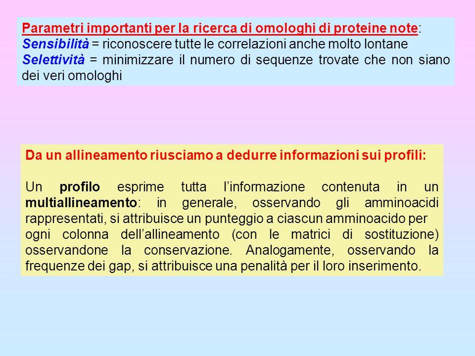 Parametri importanti per la ricerca di omologhi di proteine note: Sensibilità = riconoscere tutte le correlazioni anche molto lontane Selettività = mi