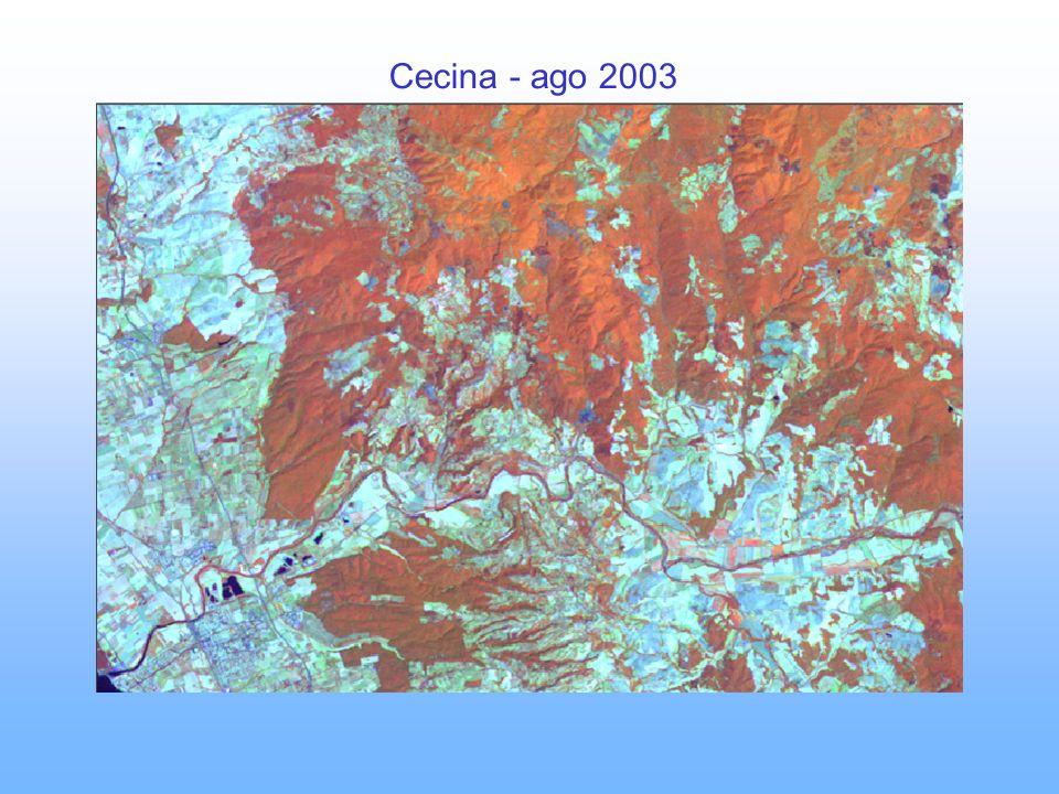 Cecina - ago 2003