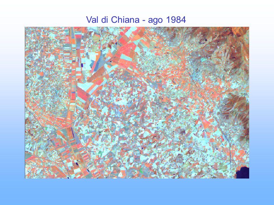 Val di Chiana - ago 1984