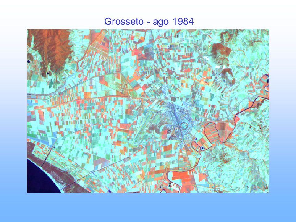 Grosseto - ago 1984