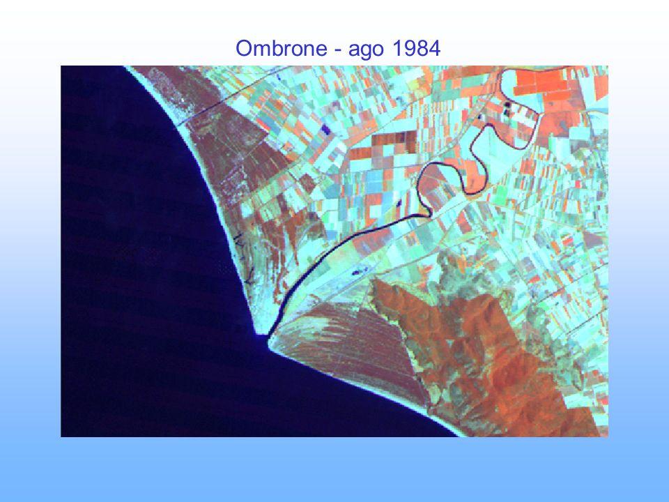 Ombrone - ago 1984