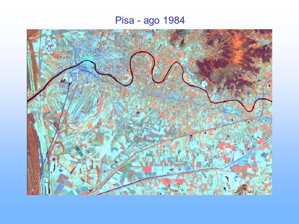 Pisa - ago 1984