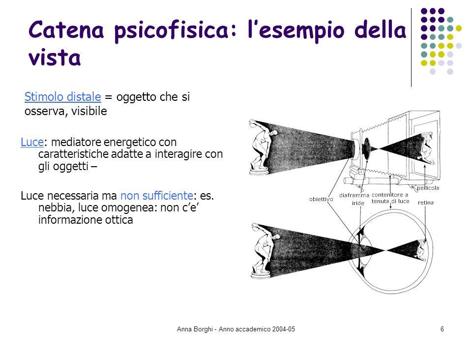 Anna Borghi - Anno accademico 2004-057 Catena psicofisica: lesempio della vista Recettore sensoriale: occhio per la visione Sistema di formazione delle immagini Cornea: pellicola esterna, dove entra la luce Cristallino: cambia forma per focalizzare oggetti vicini (sferico) o lontani (+ piatto) Pupilla: diametro + largo con luce fioca Retina: dove le cellule sensibili alla luce trasformano le luci proiettate in attività neurali 2 tipi di recettori: bastoncelli (anche con luce bassa) e coni (nella fovea, al centro, solo con buona luce, sensibili ai colori – 3 tipi: verde, rosso, blu)