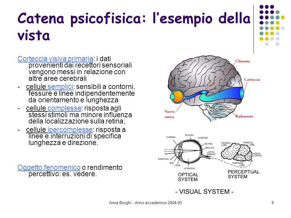 Anna Borghi - Anno accademico 2004-059 Catena psicofisica: lesempio della vista Corteccia visiva primaria: i dati provenienti dai recettori sensoriali