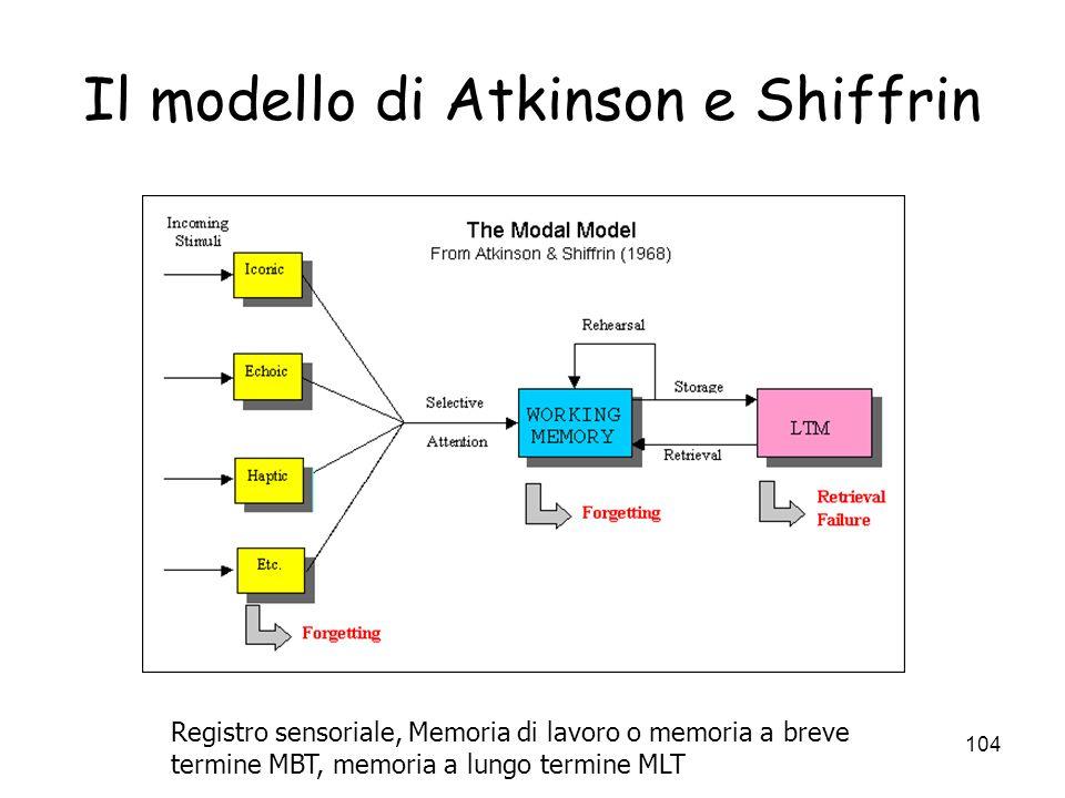 103 Modelli del doppio magazzino: Atkinson e Shiffrin Un esempio: il Modello di Atkinson e Shiffrin (68): i. I magazzini sensoriali elaborano linforma