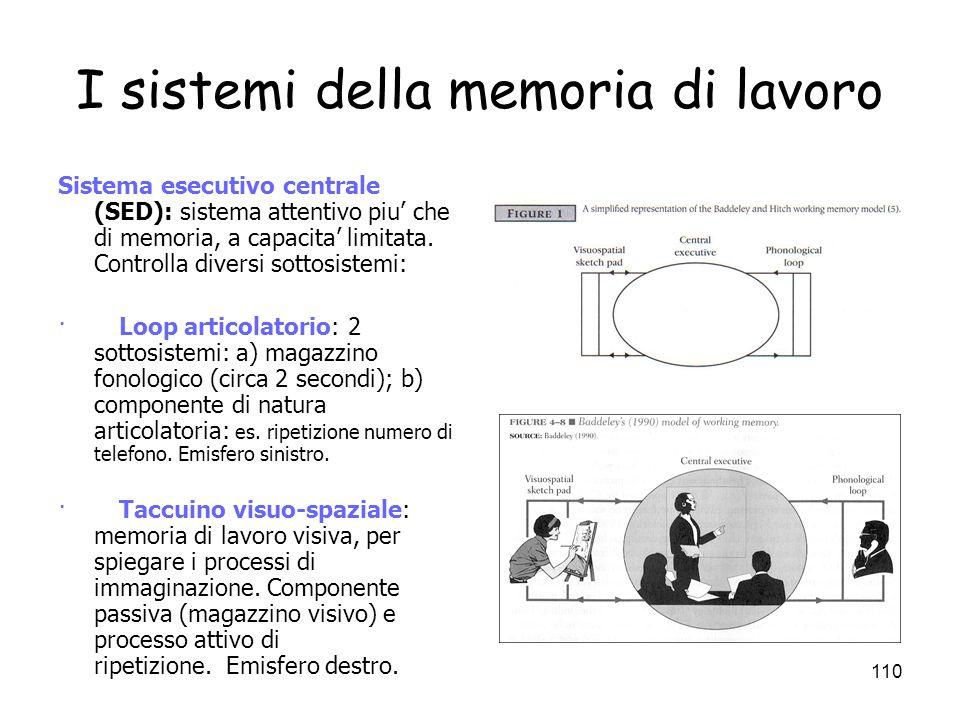 109 La MBT come memoria di lavoro Memoria di lavoro (working memory) = sistema deputato al mantenimento e elaborazione temporanea dellinformazione dur