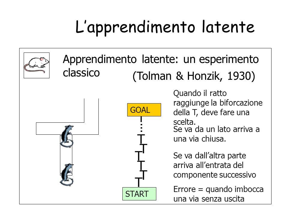 42 Lapprendimento latente Apprendimento latente = forma di apprendimento che avviene in assenza di rinforzo e non e apparente finche non viene introdo