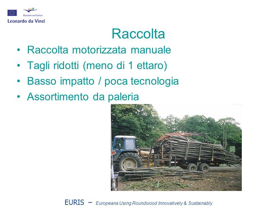 EURIS – Europeans Using Roundwood Innovatively & Sustainably Raccolta Raccolta motorizzata manuale Tagli ridotti (meno di 1 ettaro) Basso impatto / po