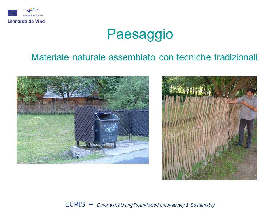 EURIS – Europeans Using Roundwood Innovatively & Sustainably Nocciolo a spacco - Slovacchia