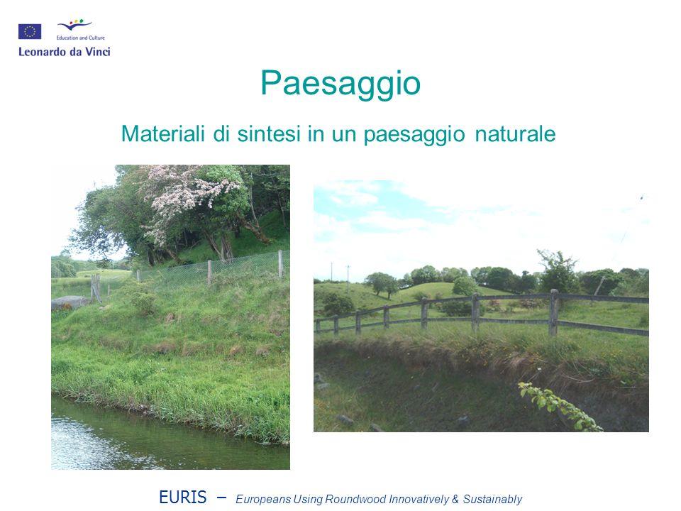 EURIS – Europeans Using Roundwood Innovatively & Sustainably Raccolta Raccolta motorizzata manuale Tagli ridotti (meno di 1 ettaro) Basso impatto / poca tecnologia Assortimento da paleria
