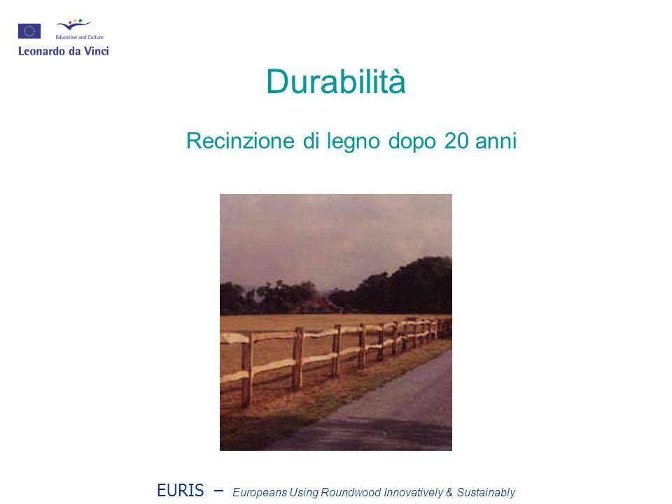 EURIS – Europeans Using Roundwood Innovatively & Sustainably Perché il legno tondo è durabile.
