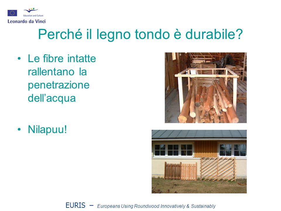 EURIS – Europeans Using Roundwood Innovatively & Sustainably Costruzione dello steccato Le stecche vengono collegate con fil di ferro in rotoli di 9 m di steccati da srotolare Altezze diverse