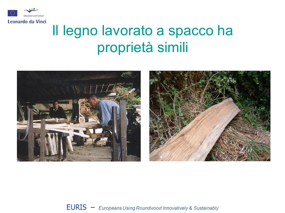 EURIS – Europeans Using Roundwood Innovatively & Sustainably Uno steccato completo
