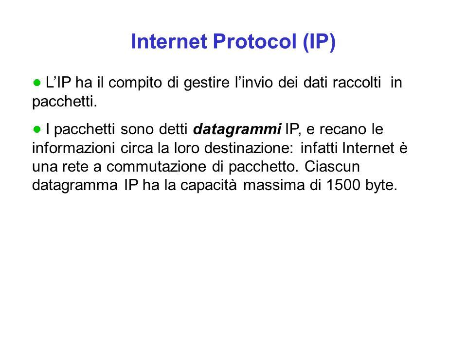 Internet Protocol (IP) LIP ha il compito di gestire linvio dei dati raccolti in pacchetti. I pacchetti sono detti datagrammi IP, e recano le informazi