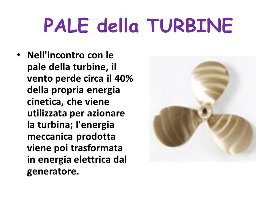 PALE della TURBINE Nell incontro con le pale della turbine, il vento perde circa il 40% della propria energia cinetica, che viene utilizzata per azionare la turbina; l energia meccanica prodotta viene poi trasformata in energia elettrica dal generatore.