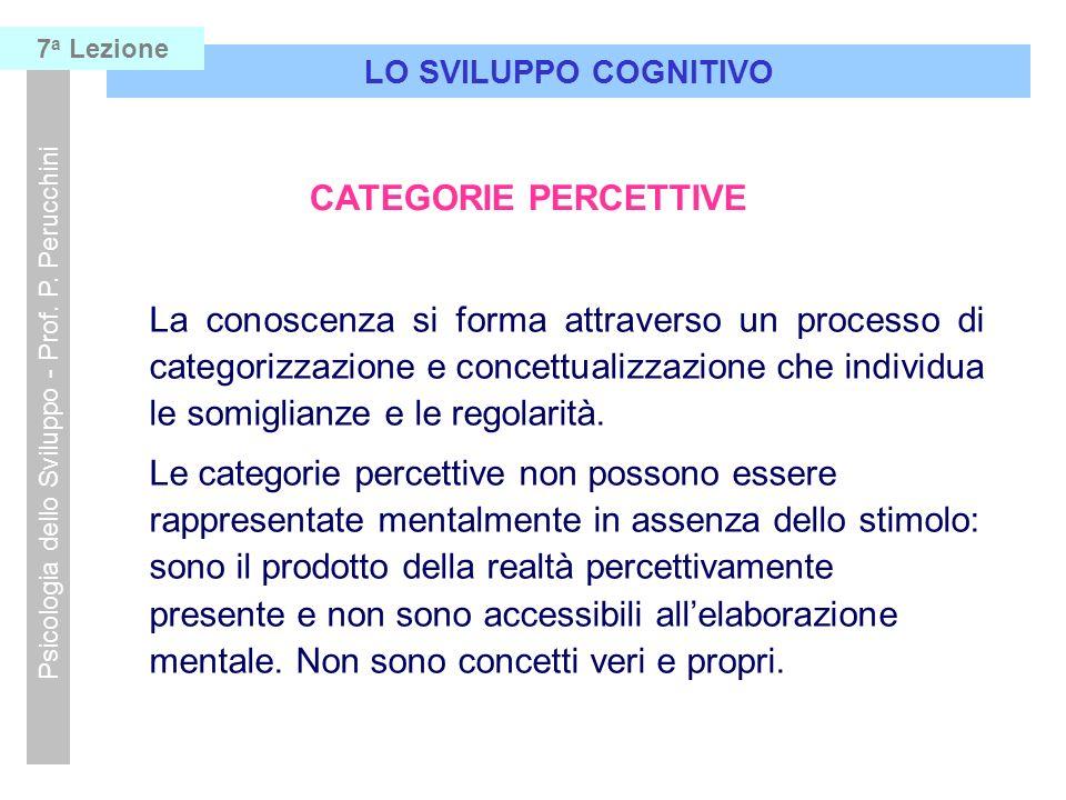 LO SVILUPPO COGNITIVO Psicologia dello Sviluppo - Prof. P. Perucchini 7 a Lezione CATEGORIE PERCETTIVE La conoscenza si forma attraverso un processo d