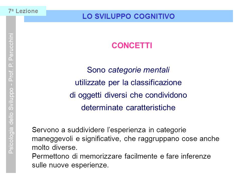 LO SVILUPPO COGNITIVO Psicologia dello Sviluppo - Prof. P. Perucchini 7 a Lezione CONCETTI Sono categorie mentali utilizzate per la classificazione di
