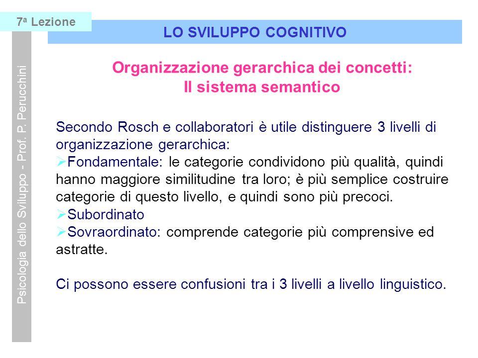 LO SVILUPPO COGNITIVO Psicologia dello Sviluppo - Prof. P. Perucchini 7 a Lezione Organizzazione gerarchica dei concetti: Il sistema semantico Secondo