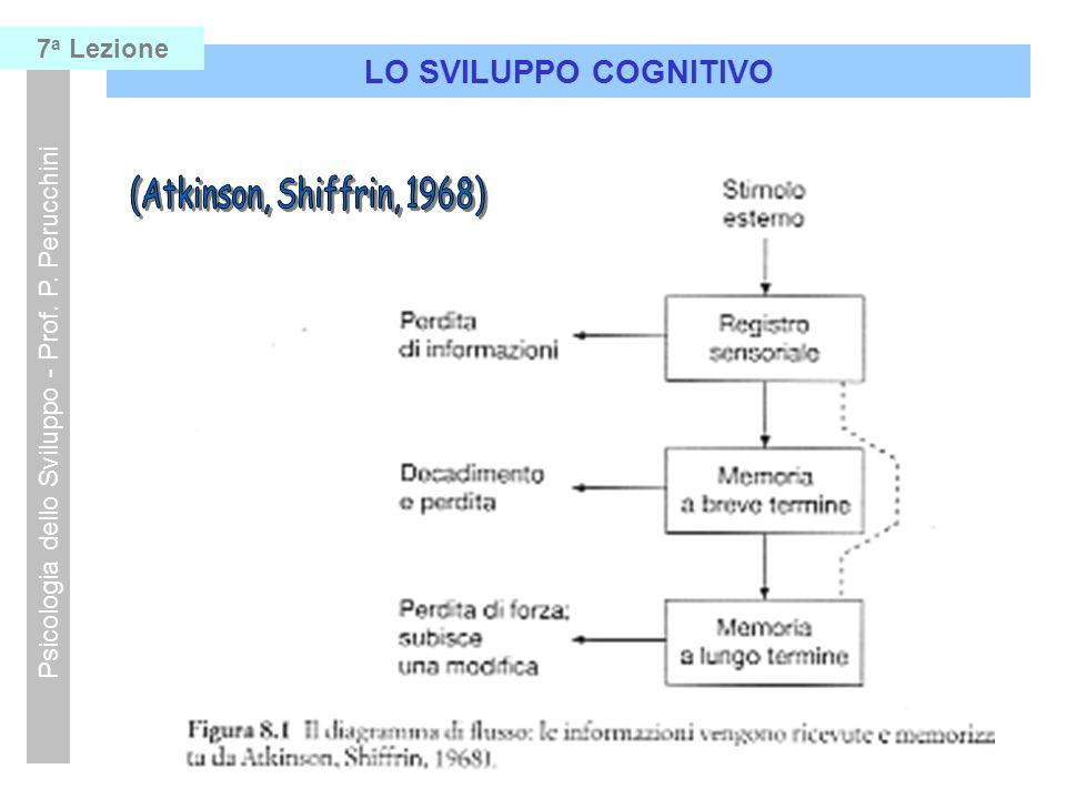LO SVILUPPO COGNITIVO Psicologia dello Sviluppo - Prof. P. Perucchini 7 a Lezione STRUTTURE