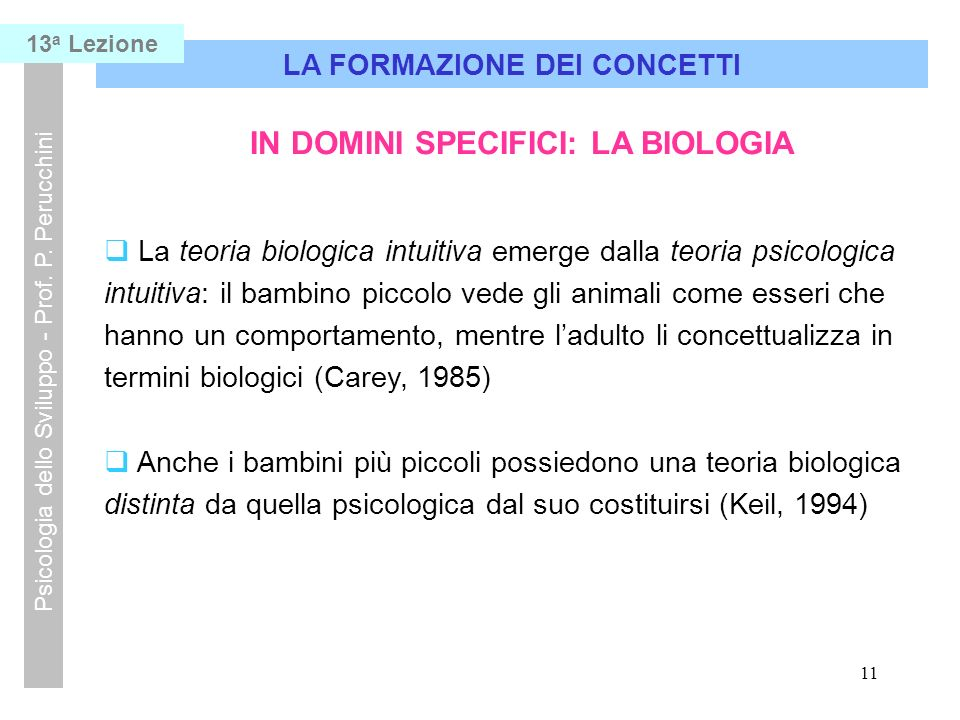 11 LA FORMAZIONE DEI CONCETTI Psicologia dello Sviluppo - Prof.