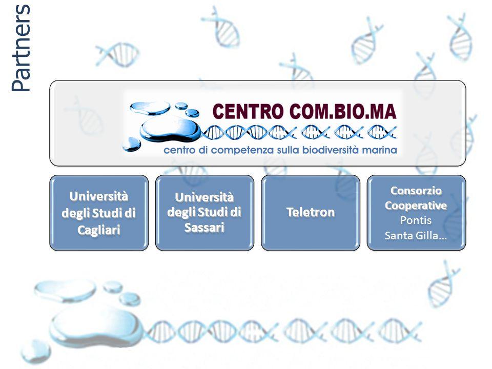 Università degli Studi di Cagliari Università degli Studi di Sassari Teletron Consorzio Cooperative Consorzio Cooperative Pontis Santa Gilla… Partners