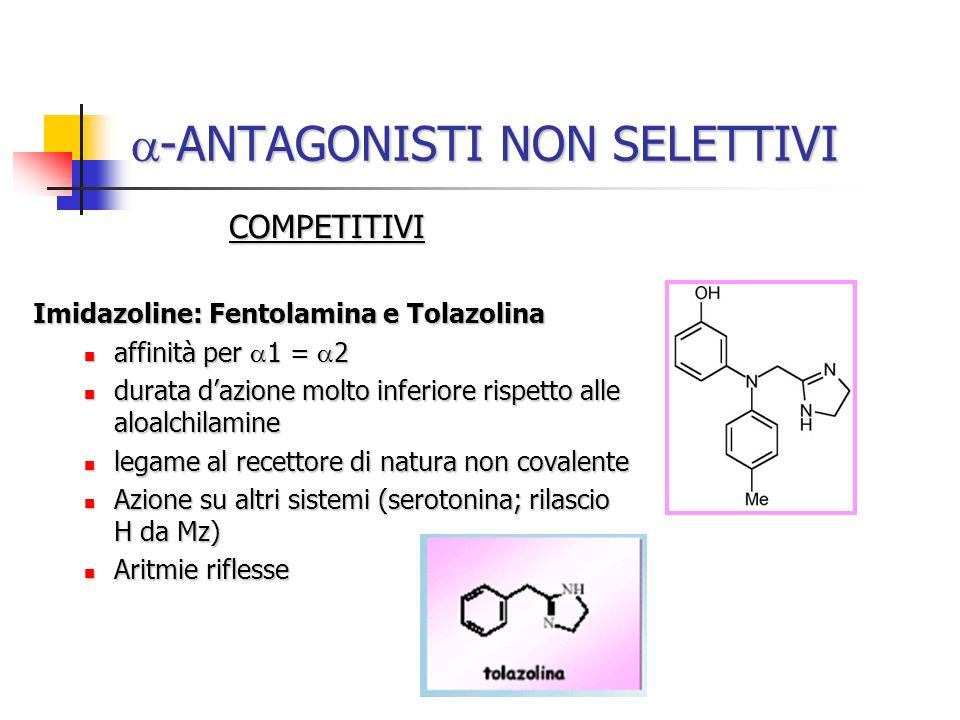 -ANTAGONISTI NON SELETTIVI -ANTAGONISTI NON SELETTIVI COMPETITIVI Imidazoline: Fentolamina e Tolazolina Imidazoline: Fentolamina e Tolazolina affinità