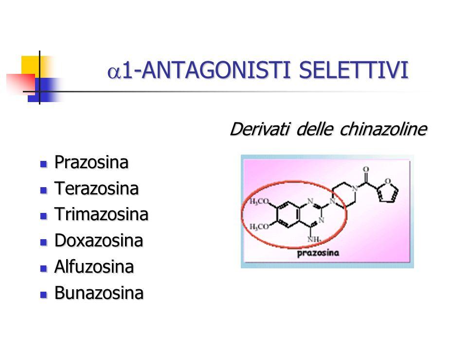 1-ANTAGONISTI SELETTIVI 1-ANTAGONISTI SELETTIVI Prazosina Prazosina Terazosina Terazosina Trimazosina Trimazosina Doxazosina Doxazosina Alfuzosina Alf