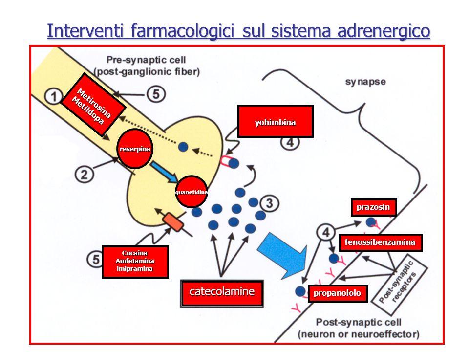Interventi farmacologici sul sistema adrenergico MetirosinaMetildopa CocainaAmfetaminaimipramina catecolamine propanololo prazosin fenossibenzamina yo