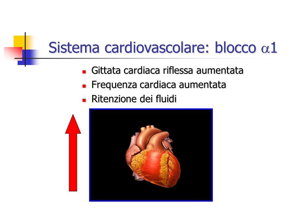 Gittata cardiaca riflessa aumentata Gittata cardiaca riflessa aumentata Frequenza cardiaca aumentata Frequenza cardiaca aumentata Ritenzione dei fluid