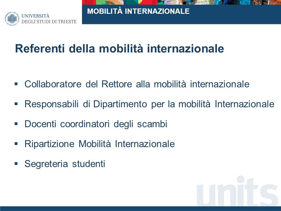 Referenti della mobilità internazionale Collaboratore del Rettore alla mobilità internazionale Responsabili di Dipartimento per la mobilità Internazionale Docenti coordinatori degli scambi Ripartizione Mobilità Internazionale Segreteria studenti MOBILITÀ INTERNAZIONALE