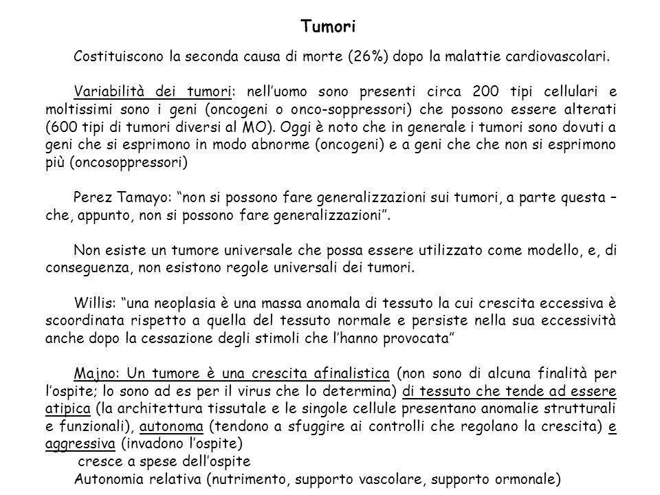 Oncologia (dal greco, onkos): scienza che studia i tumori Neoplasia (neoplasma; dal greco neos= nuovo e plasos=formazione): nuova crescita, neoformazione.