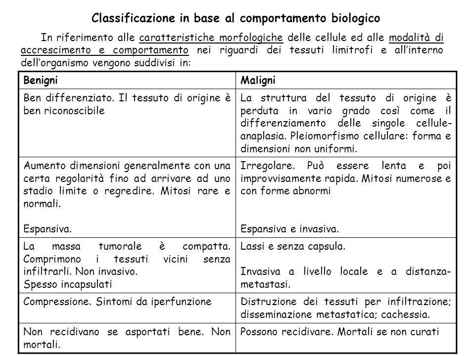In riferimento alle caratteristiche morfologiche delle cellule ed alle modalità di accrescimento e comportamento nei riguardi dei tessuti limitrofi e