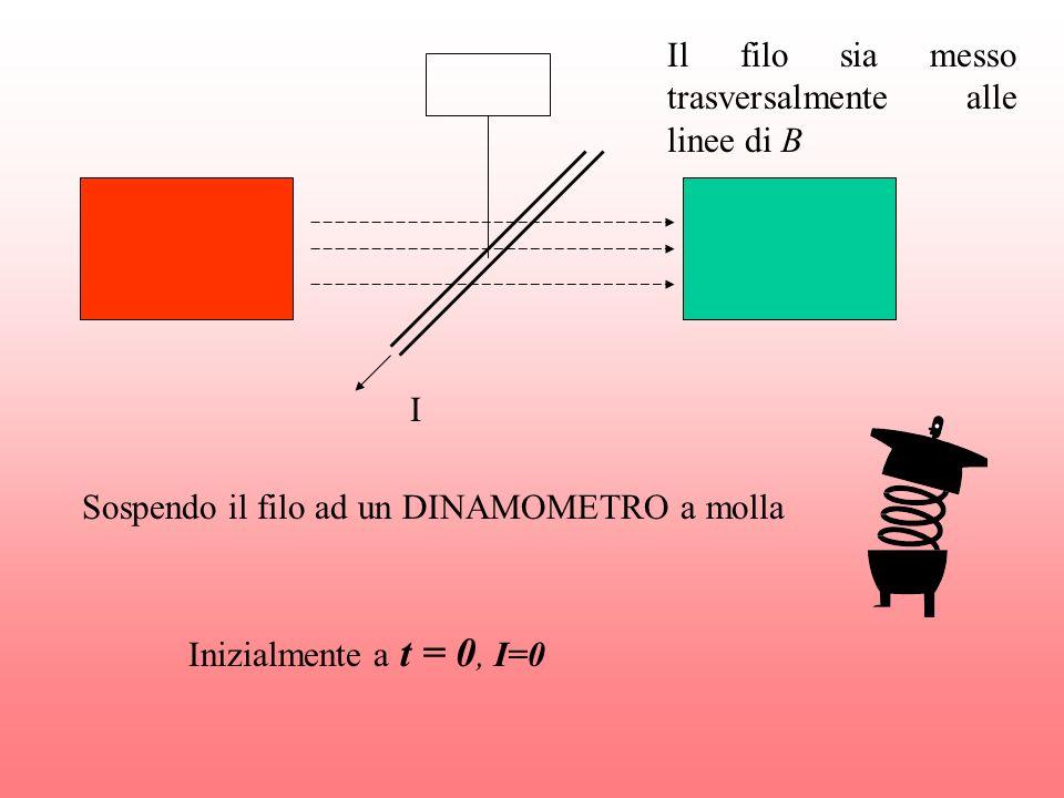 I Sospendo il filo ad un DINAMOMETRO a molla Inizialmente a t = 0, I=0 Il filo sia messo trasversalmente alle linee di B