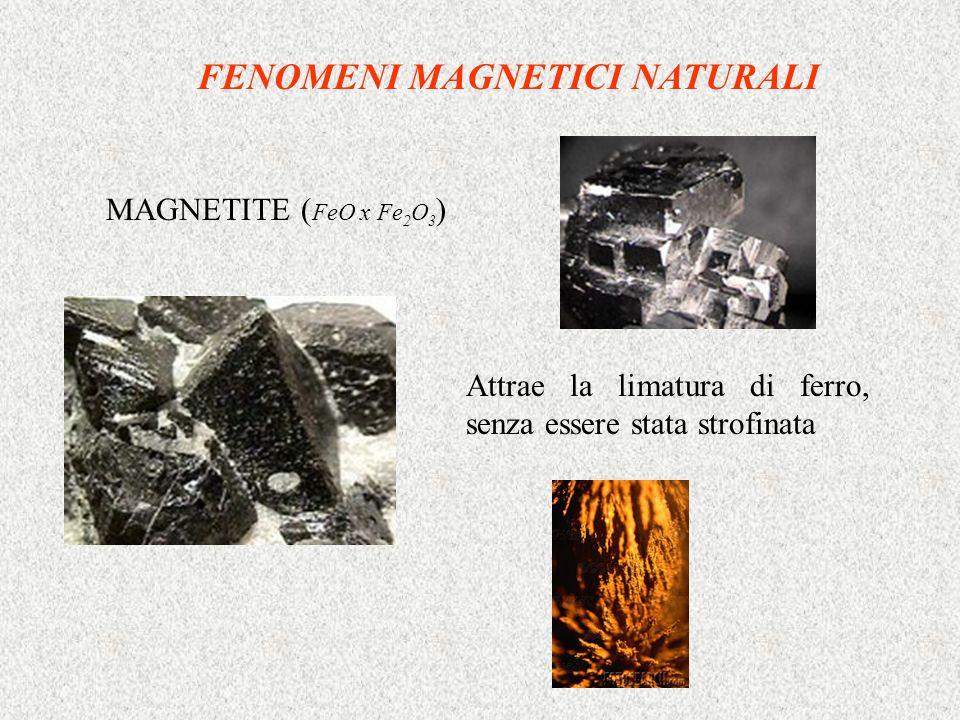 Calamite magnetite lavorata a ferro di cavallo Si osserva che ci sono DUE POLARITA (contrassegnate con colori diversi) F magnetica Attrattiva per poli opposti Repulsiva per poli uguali