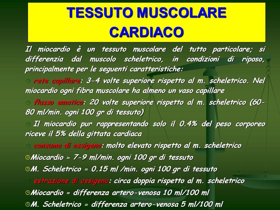 TESSUTO MUSCOLARE CARDIACO Il miocardio è un tessuto muscolare del tutto particolare; si differenzia dal muscolo scheletrico, in condizioni di riposo, principalmente per le seguenti caratteristiche: rete capillare: 3-4 volte superiore rispetto al m.