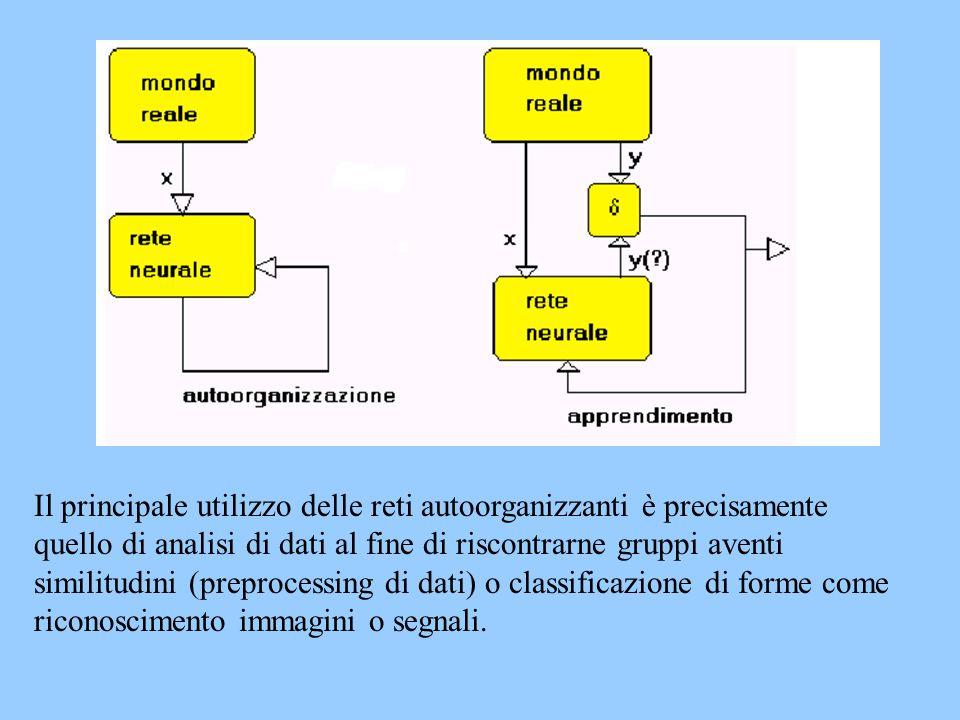 Il principale utilizzo delle reti autoorganizzanti è precisamente quello di analisi di dati al fine di riscontrarne gruppi aventi similitudini (prepro
