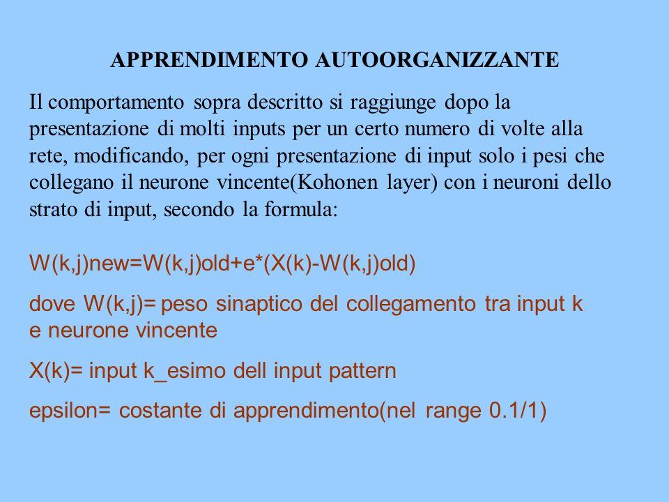 APPRENDIMENTO AUTOORGANIZZANTE Il comportamento sopra descritto si raggiunge dopo la presentazione di molti inputs per un certo numero di volte alla r