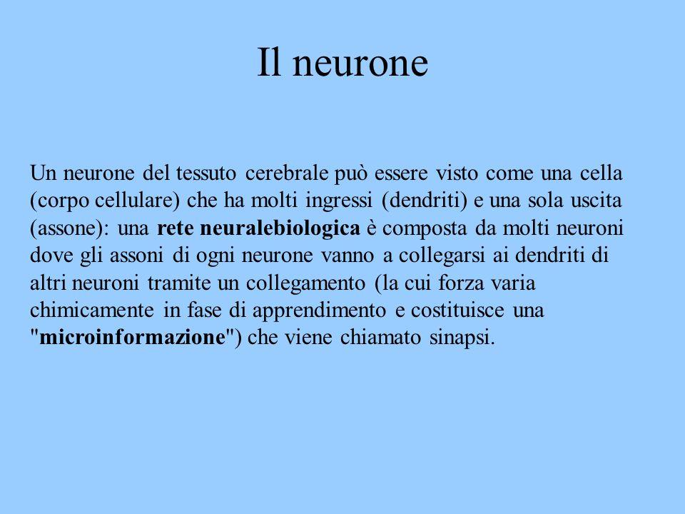 Un neurone del tessuto cerebrale può essere visto come una cella (corpo cellulare) che ha molti ingressi (dendriti) e una sola uscita (assone): una re