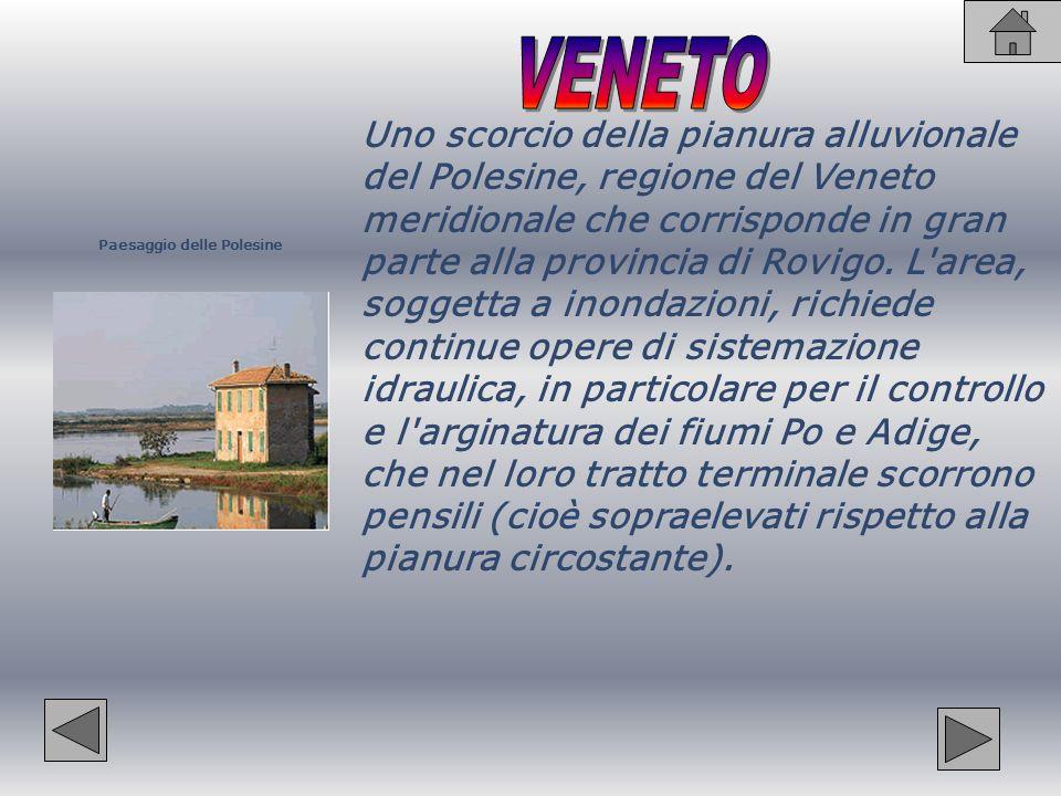 Bacino del Po Il bacino idrografico del Po si estende per 74.970 km², quasi un quarto della superficie territoriale dell Italia.