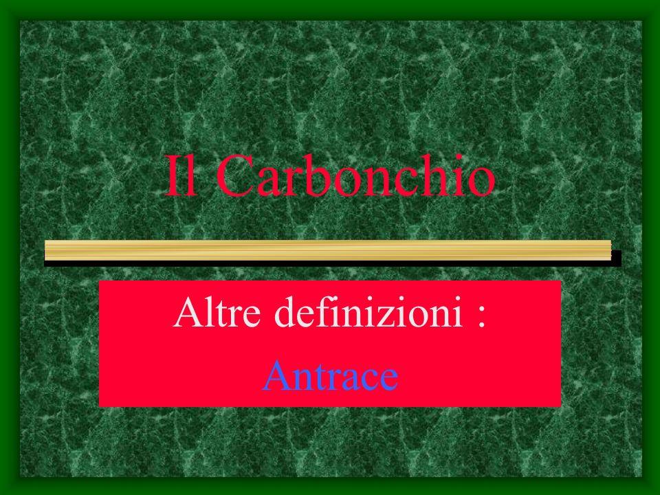 Il Carbonchio Altre definizioni : Antrace