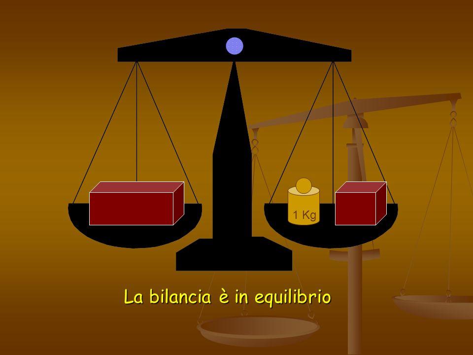 La bilancia è in equilibrio 1 Kg