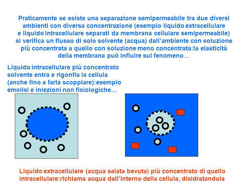 Praticamente se esiste una separazione semipermeabile tra due diversi ambienti con diversa concentrazione (esempio liquido extracellulare e liquido in