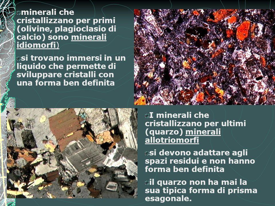 minerali che cristallizzano per primi (olivine, plagioclasio di calcio) sono minerali idiomorfi) si trovano immersi in un liquido che permette di svil